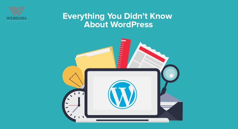 Everything You Didn't Know About WordPress